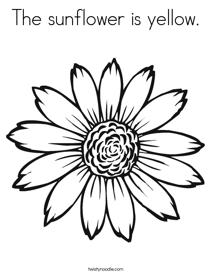 685x886 Sunflower Coloring Pages The Sunflower Is Yellow. Coloring Page