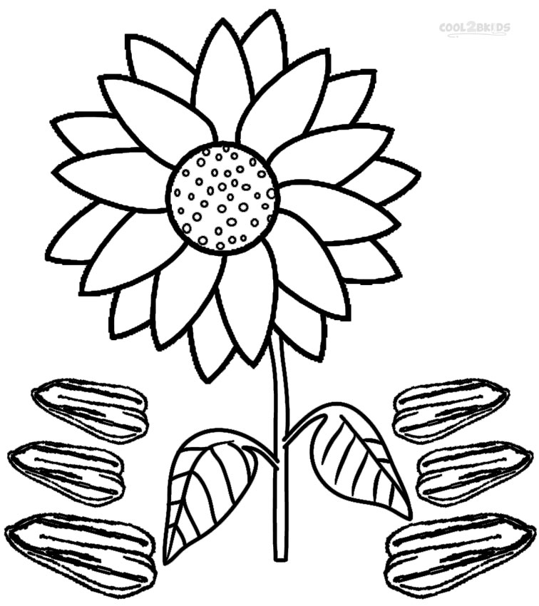sunflower coloring pages craft - photo#10