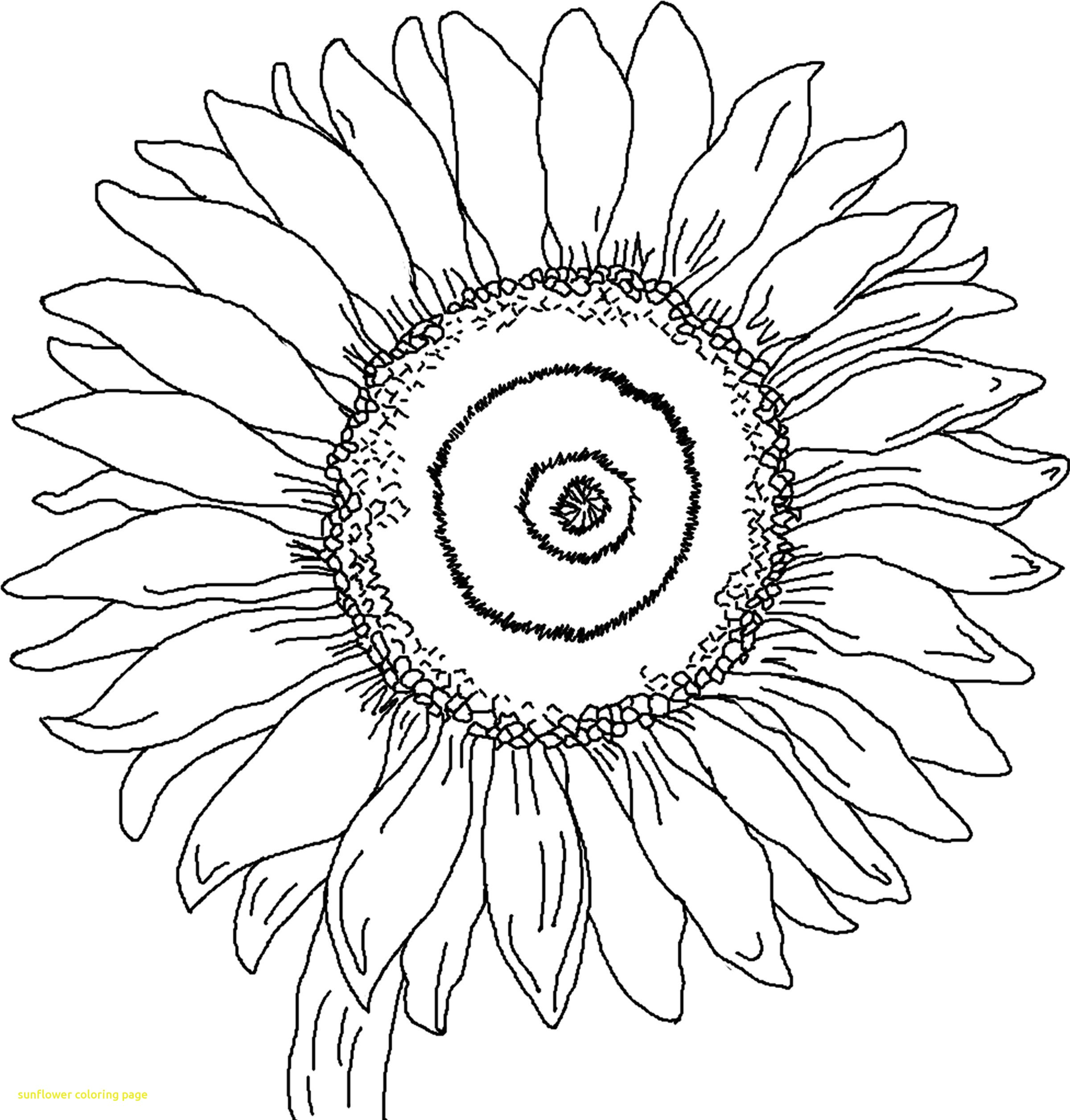 2400x2511 Sunflower Coloring Page With Free Printable Sunflower Coloring