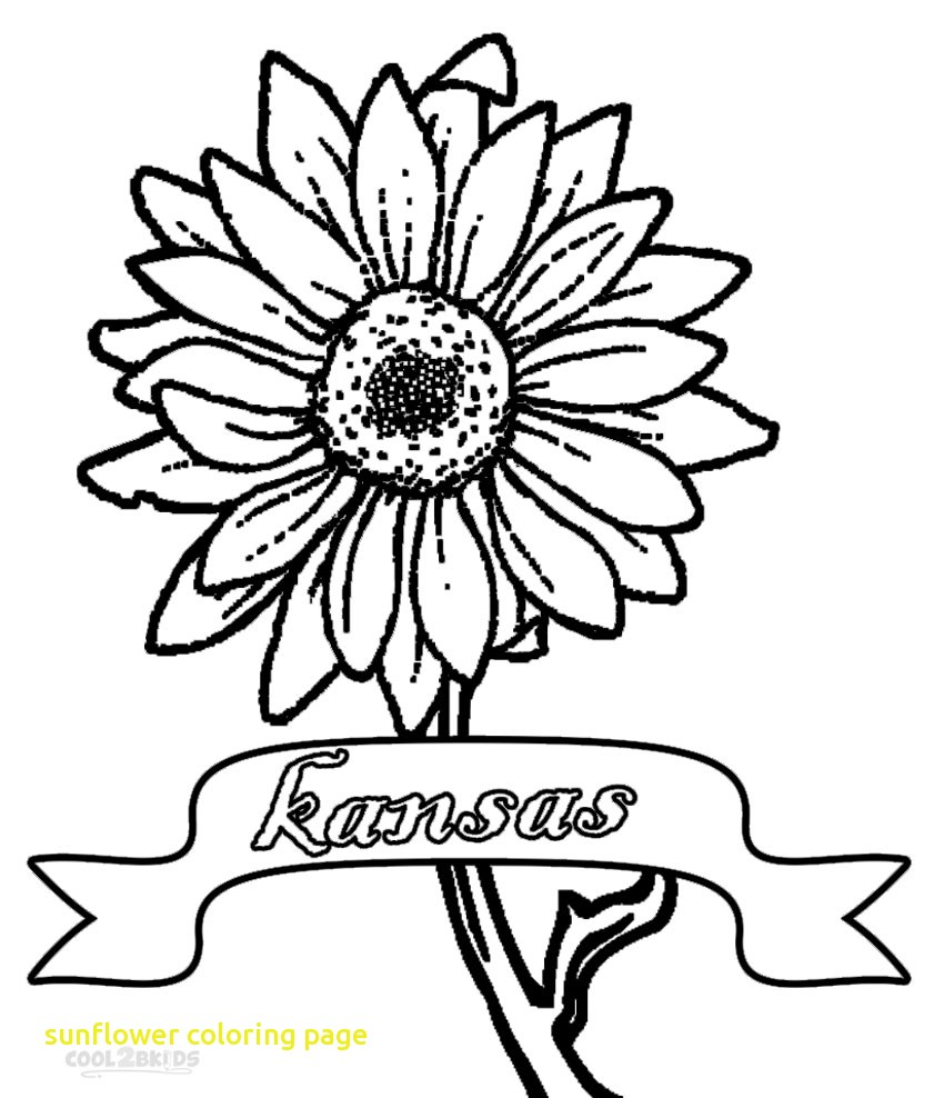 850x988 Sunflower Coloring Page With Printable Sunflower Coloring Pages
