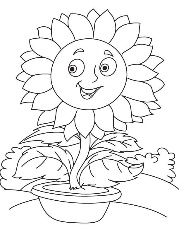 612x792 Sunflower Pot Coloring Page Download Free Sunflower Pot Coloring