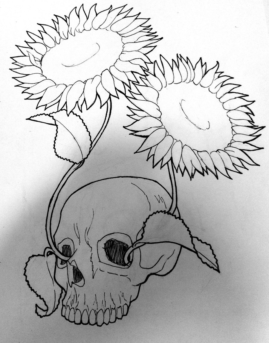 900x1145 Drawings Pictures Of Sun Flowers Pencil Sketches Sunflowers
