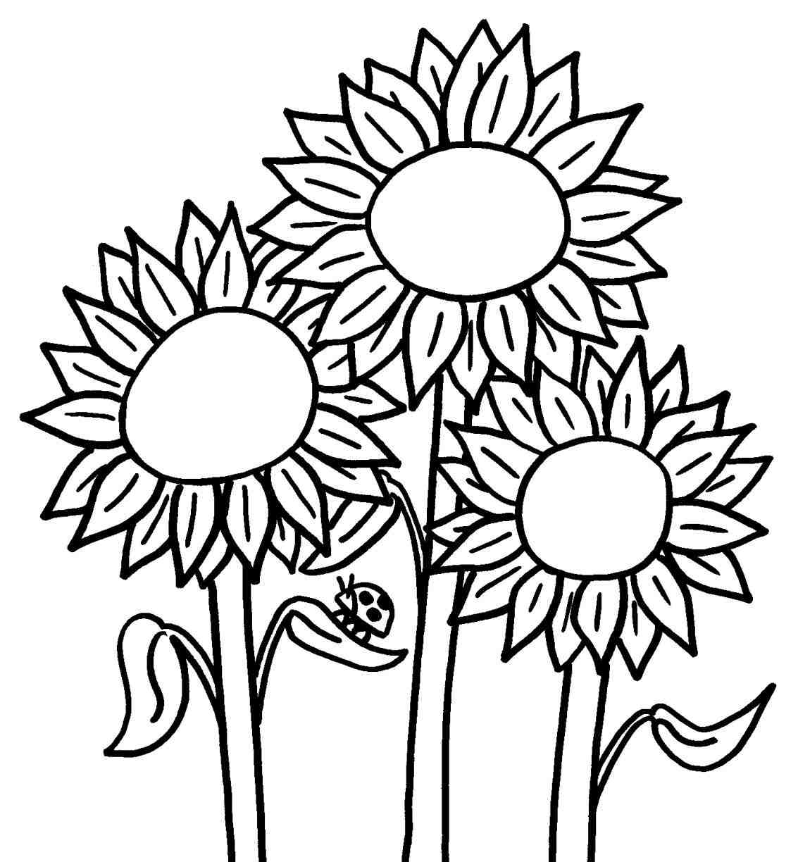 1133x1224 Sunflower Drawing Easy For Kids
