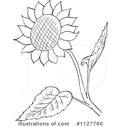 400x420 Sunflower Clipart