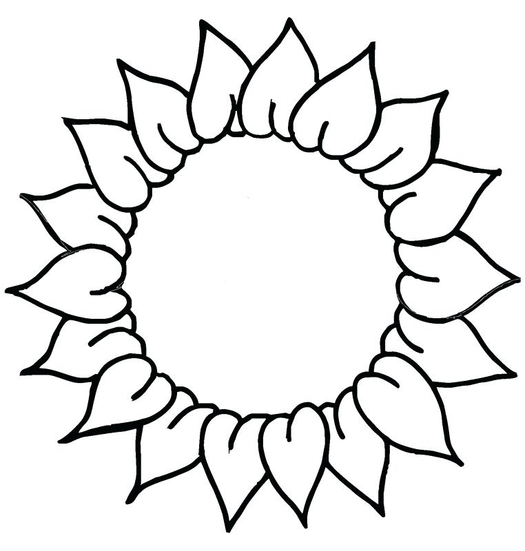 Sunflower Line Drawing at GetDrawings | Free download