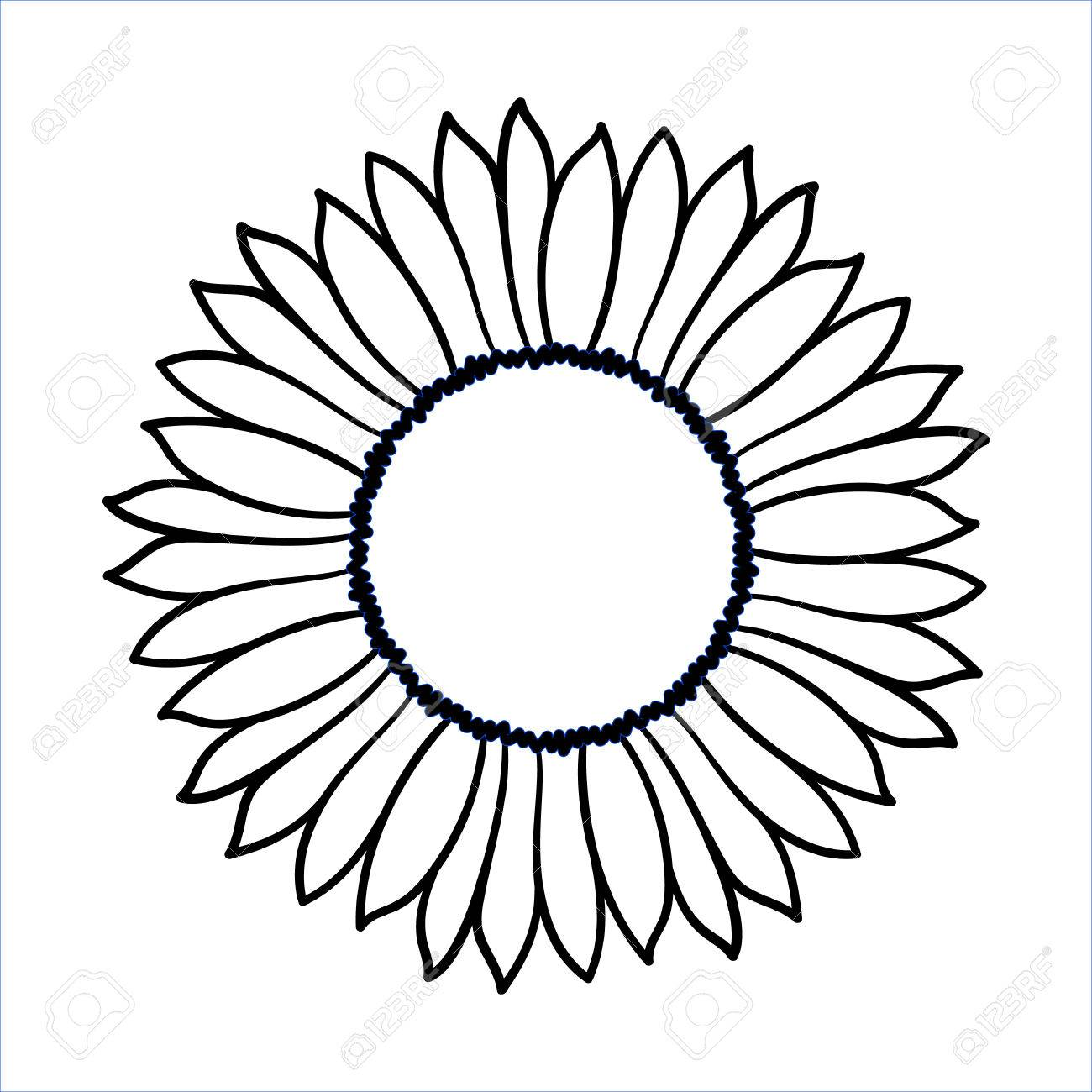 1300x1300 Vector Doodle Sunflower Illustration. Simple Hand Drawn Icon