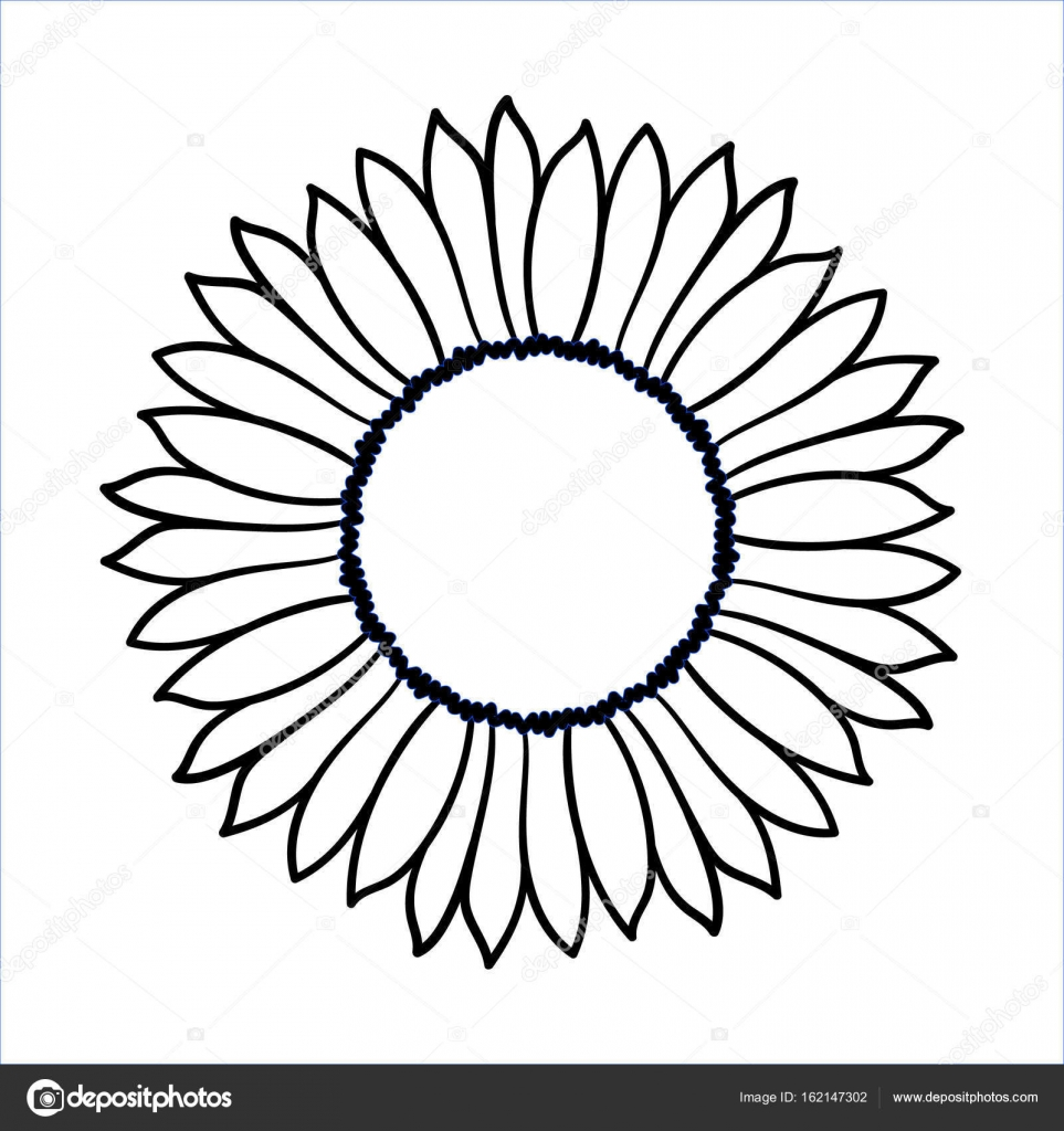 963x1024 Vector Doodle Sunflower Illustration Stock Vector Aksenova Yu