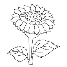 230x230 15 Beautiful Sunflower Coloring Pages For Your Little Girl