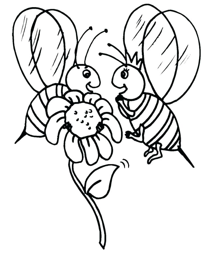 750x901 Pictures Of Sunflowers To Color Van Coloring Pages Van Coloring