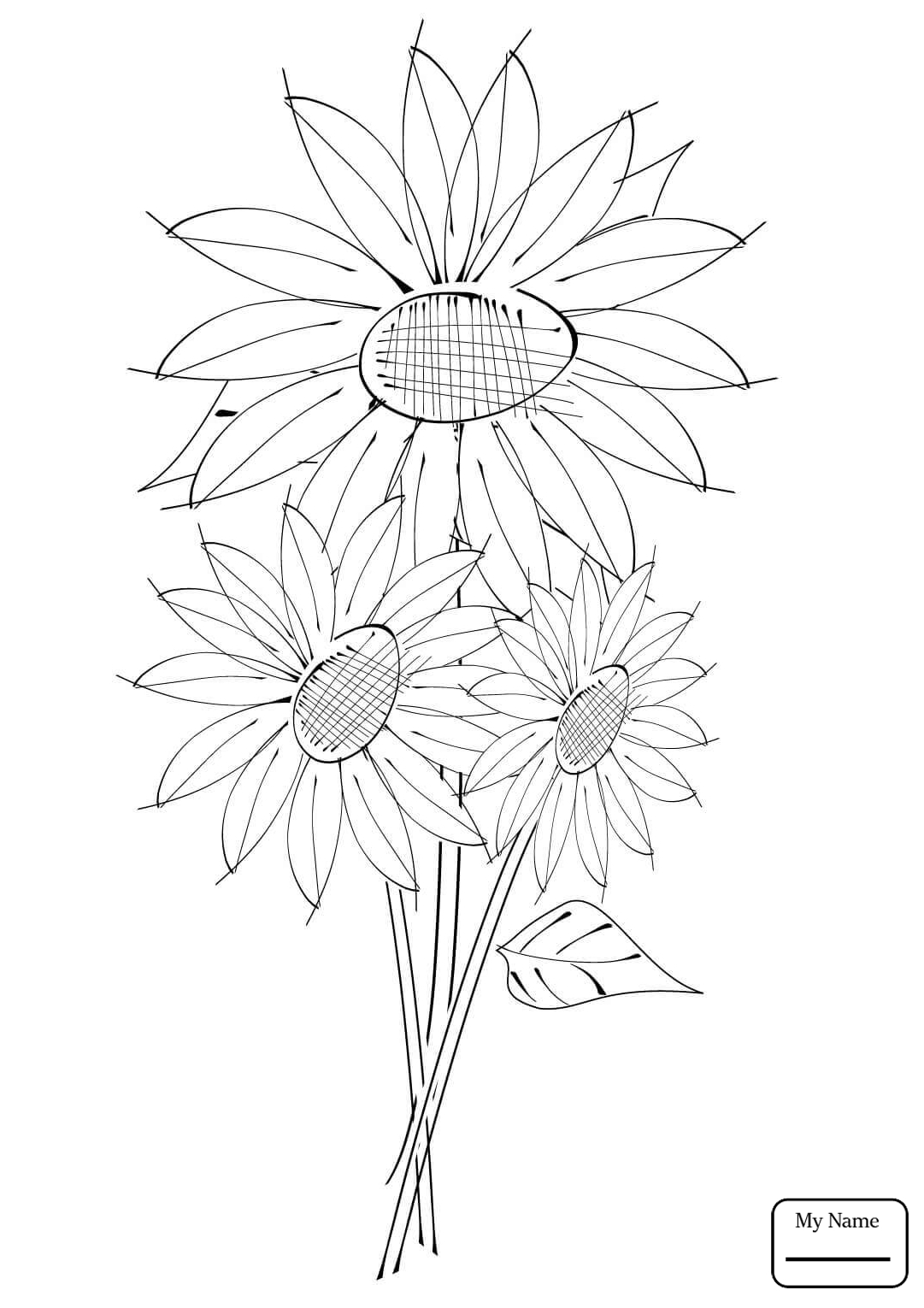 1081x1530 Realistic Sunflowers Flowers Coloring Pages