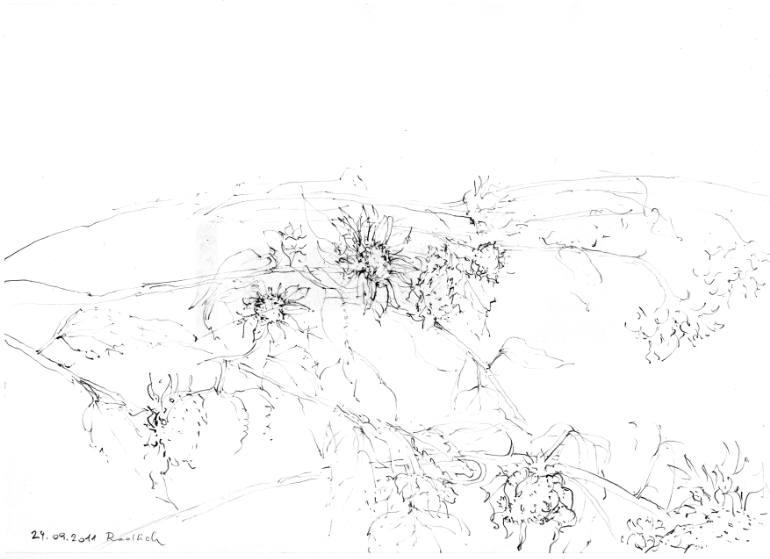770x559 Saatchi Art Depressive Sunflowers Drawing By Ingrid Redlich Pfund