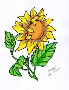 230x300 Sunflower 3