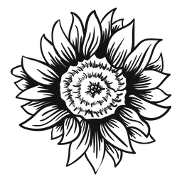 256x256 Sunflower Illustration With Text