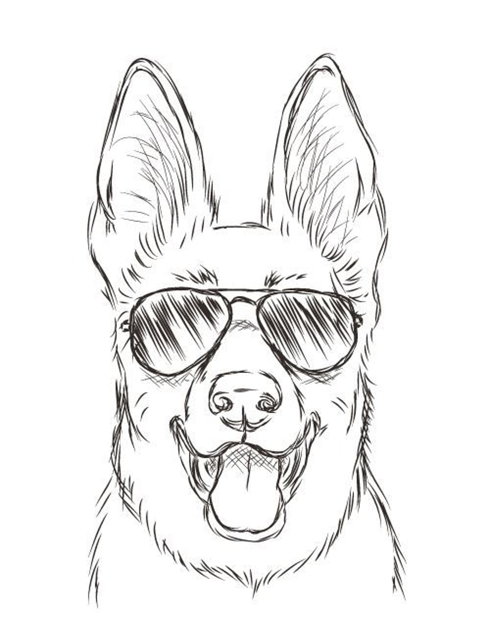 970x1220 Sketch Of Dog Face Wearing Aviator Sunglasses Hd Wallpaper