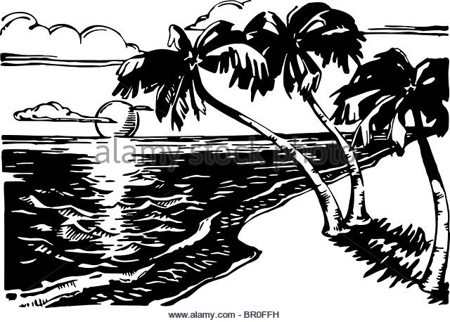 640x458 Ocean Palm Trees Sunrise Black And White Stock Photos Amp Images