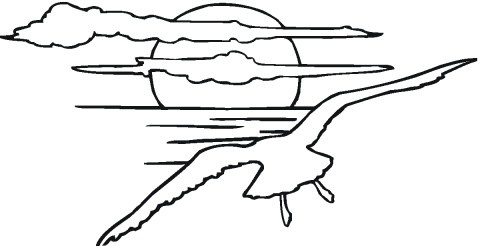 480x246 Coloring Images Of Sunsets Seagulls Coloring Pages Super