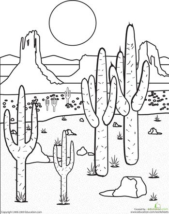 349x440 Desert Sunset Coloring Pages Cactus