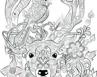340x270 Color Pencil Deer Etsy
