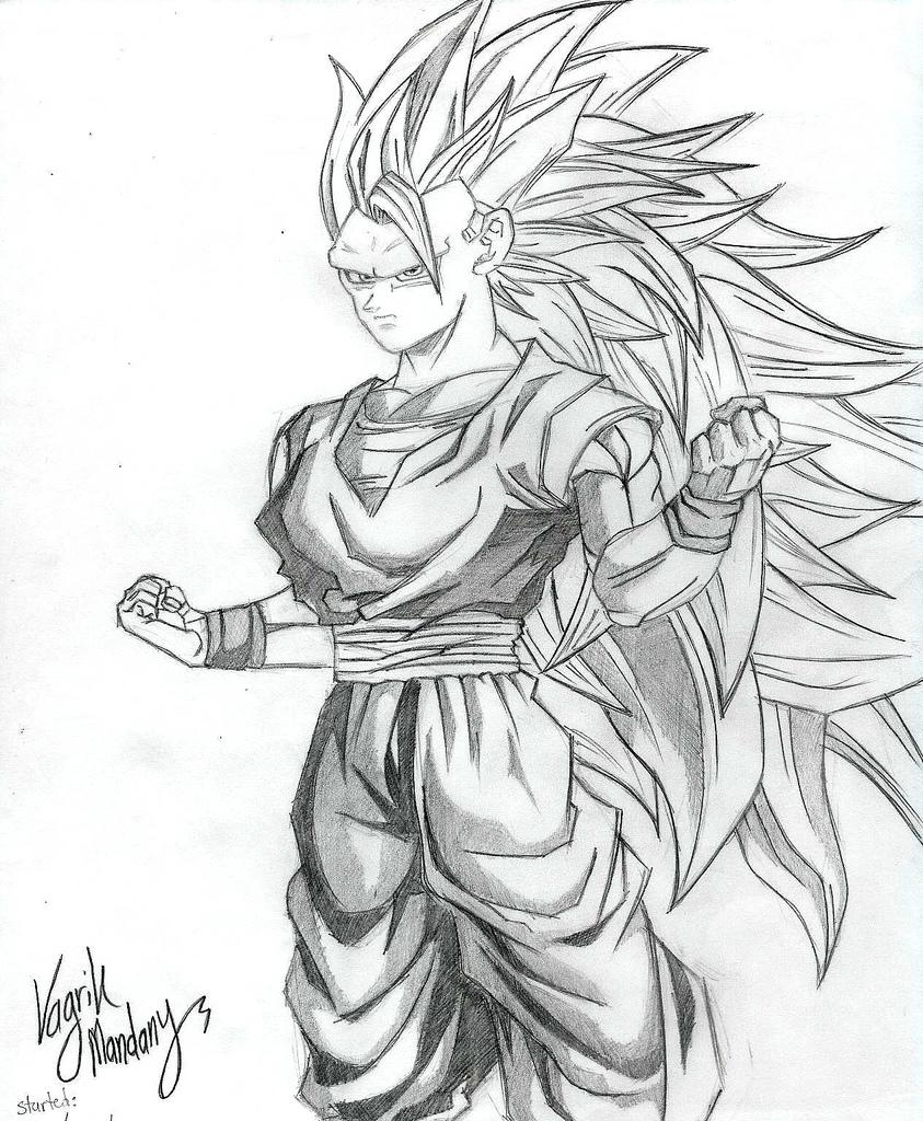 843x1024 Goku Super Saiyan 3 By Pokriktiger