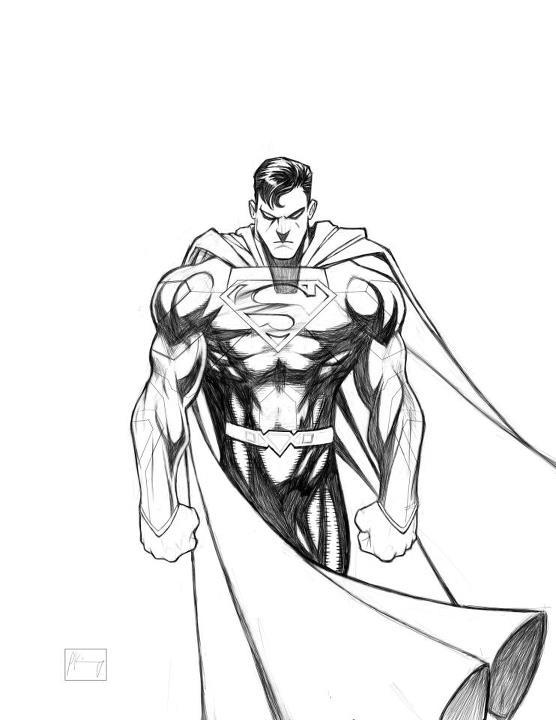 556x720 Gallery Superman Sketch,