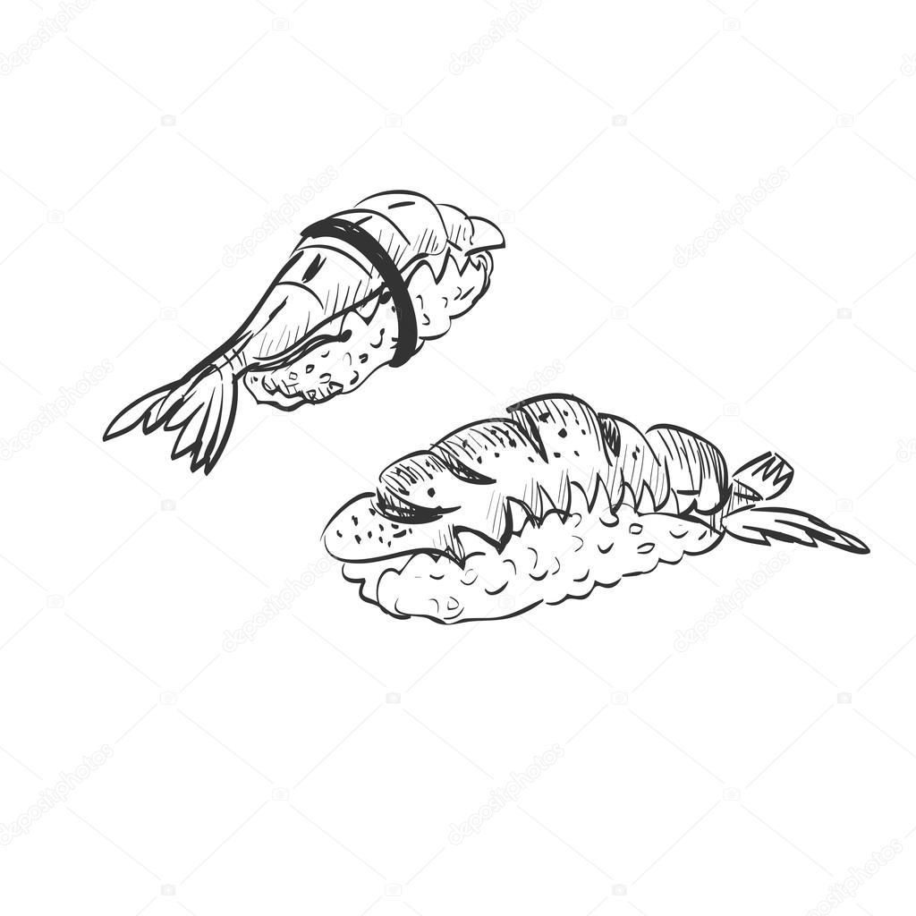 1024x1024 Doodle Sushi Stock Vector Netkoff
