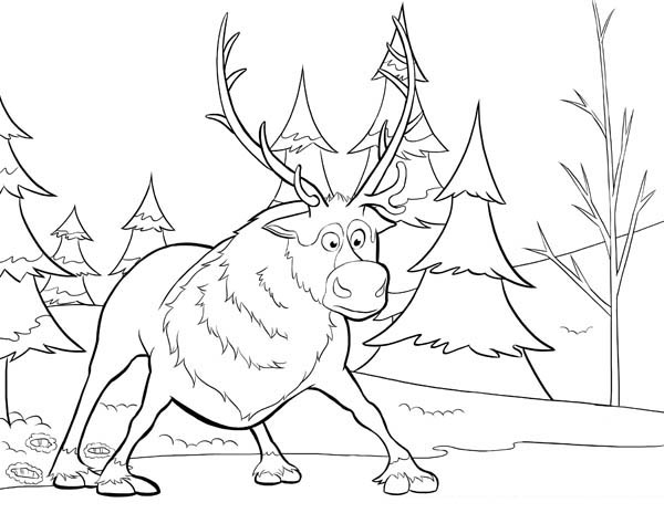 600x464 Sven From Disney Movie Frozen Coloring Page