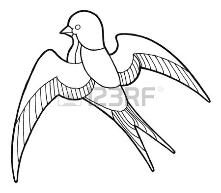 450x392 Contour Hand Drawing Swallow