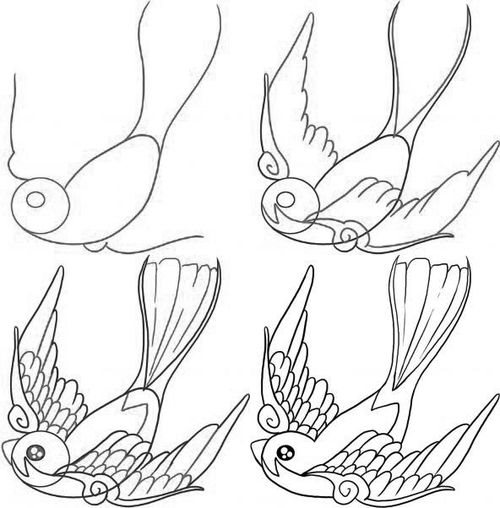 500x508 How To Draw A Bird Step By Step 10 Great Ways (Drawings