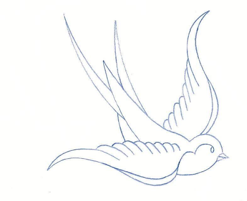 785x640 Old School Sparrow Drawing Traditional Swallow Tattoo On Tattoo