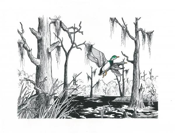 600x463 Depression Swamp Its A Swamp Thing. Drawing