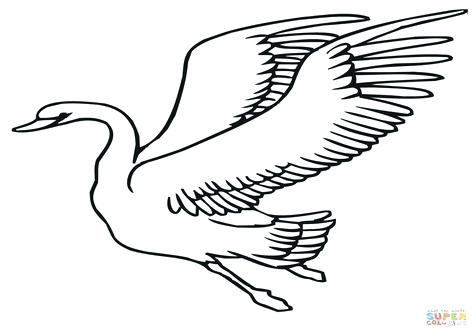 476x333 Swan Coloring Swans Coloring Pages Bella Swan Coloring Pages