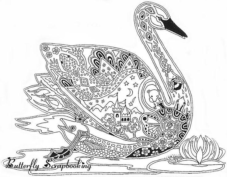 736x576 Drawn Swan Coloring