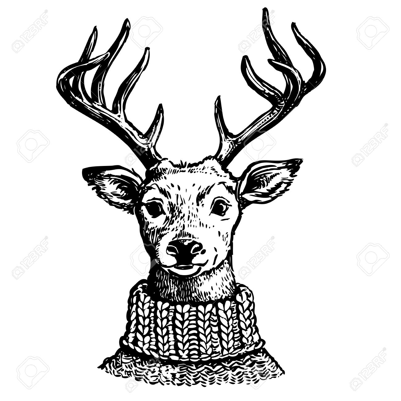 1300x1300 Hand Drawn Pen And Ink Vector Drawing Of A Reindeer Head. Funny