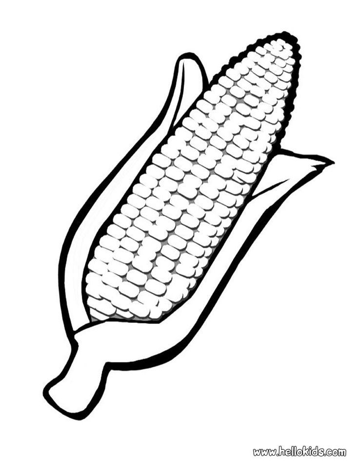736x951 Sweet Corn Clipart Black And White