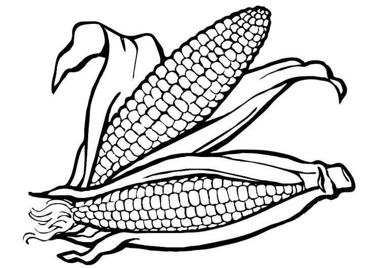 750x531 Coloring Page Corn