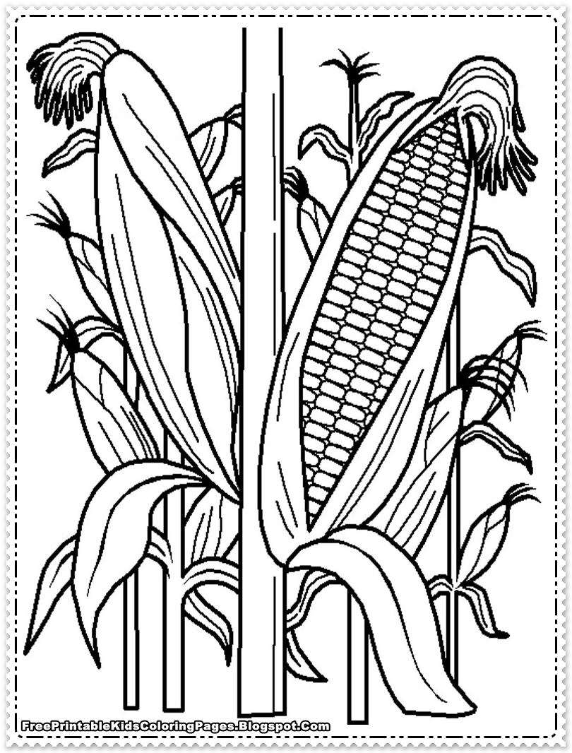810x1066 Corn Coloring Pages Cornfield Printable Kids