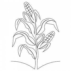 300x300 Corn Stalk Border 001 Sweet Dreams Quilt Studio
