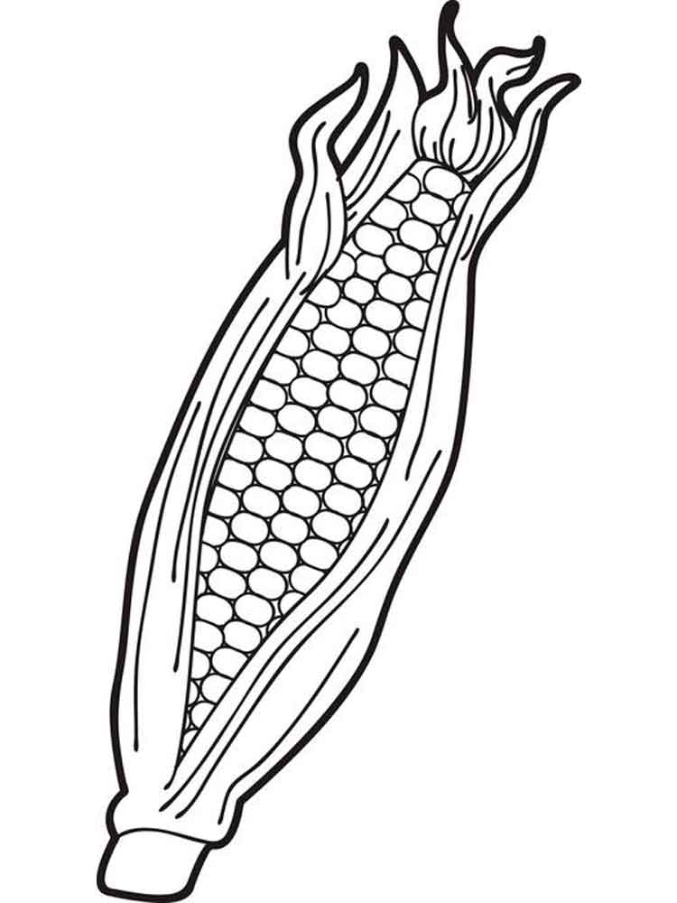 750x1000 Corn Coloring Page Sweet Corn Coloring Page