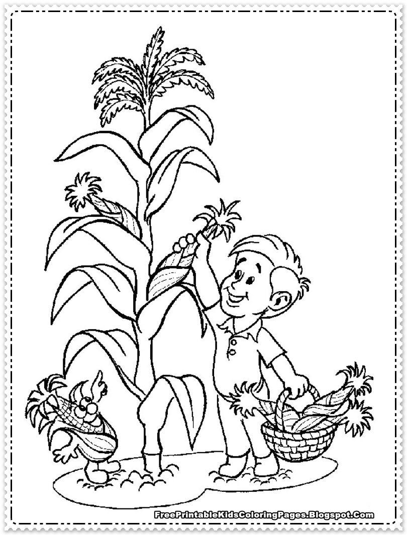 Chick And Corn Coloring Pages Alphabet C Of Nature Food Colors ... | 1066x810