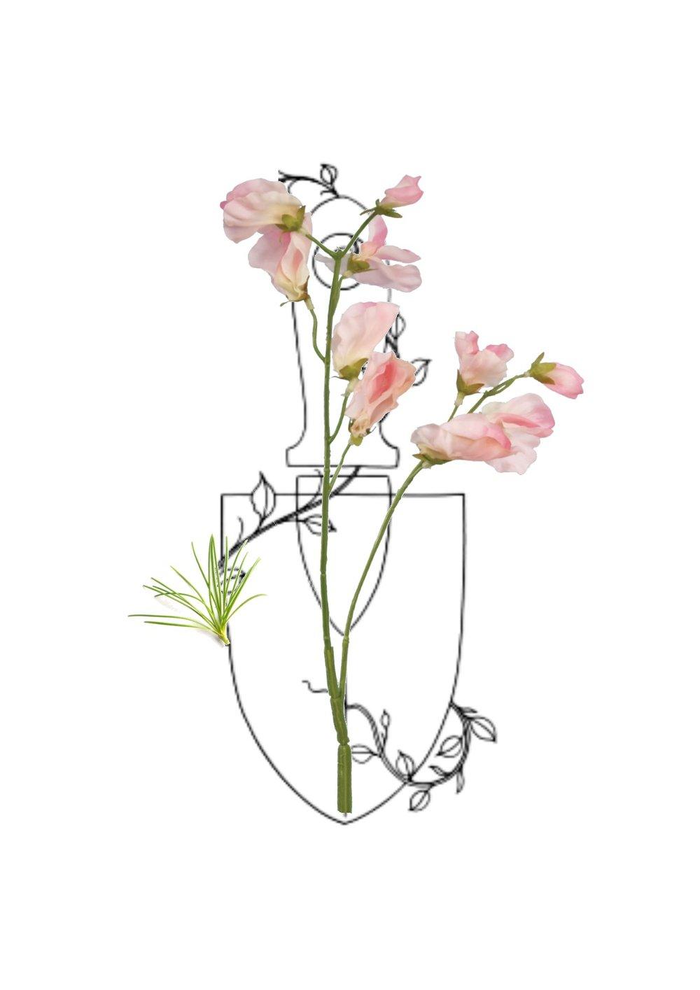 1000x1415 Digdig.flower.farm