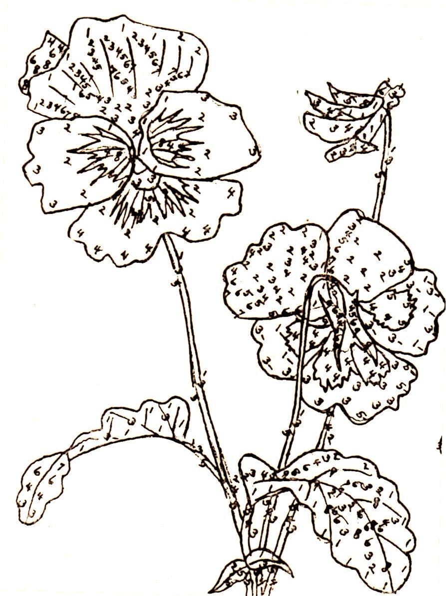 893x1193 Belding Silks Embroidery Patterns Wild Rose, Violet, Pansy