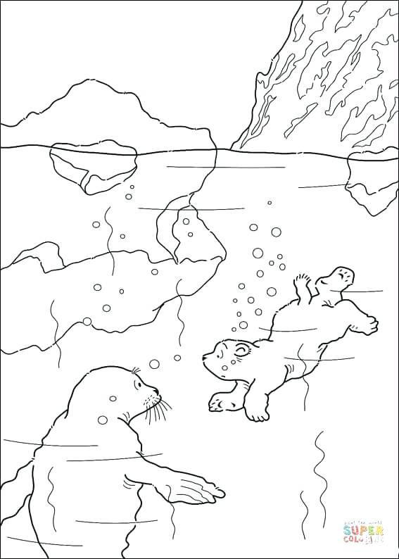 567x794 Swimming Pictures To Color Swimming Coloring Page Media