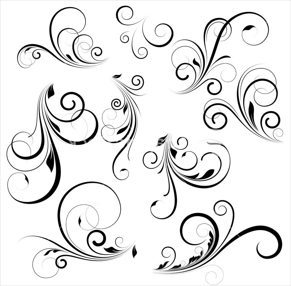 1000x984 Top Vector Swirls Mkmgwvoo Pictures