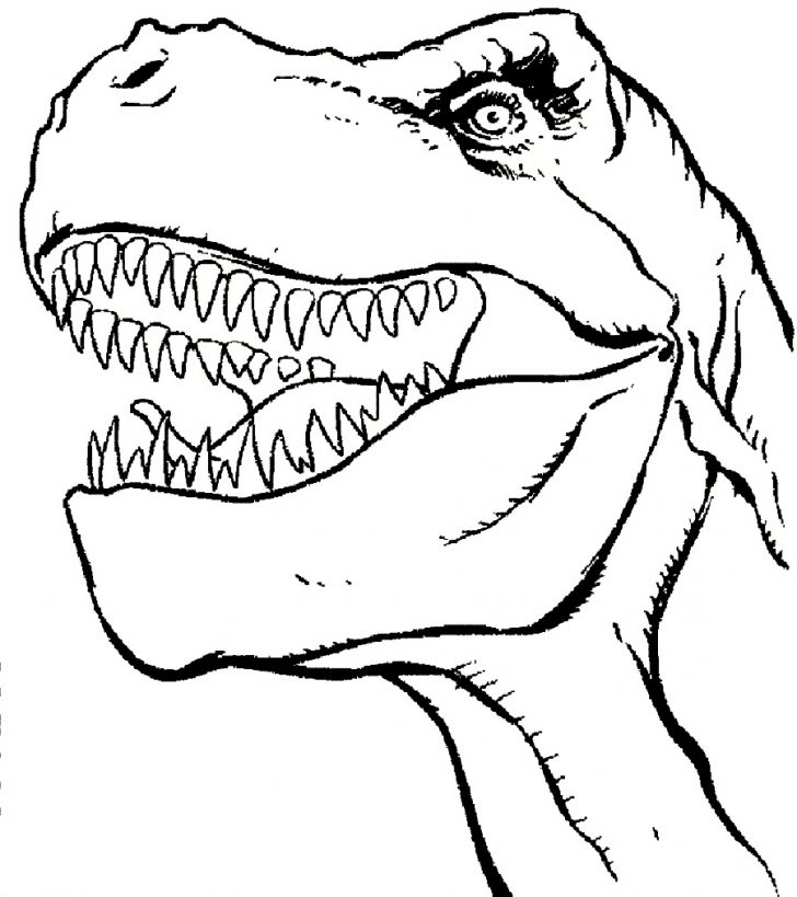 728x819 T Rex Coloring Page