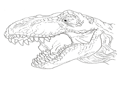 T Rex Head Drawing At Getdrawings Com Free For Personal Use T Rex
