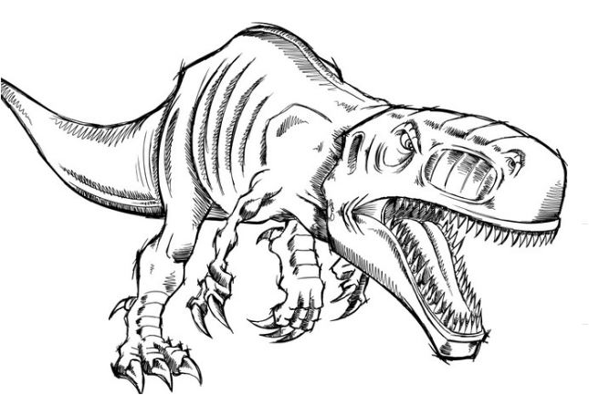 645x433 Dinosaur Coloring Pages
