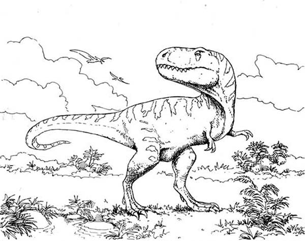 600x474 T Rex Intimidating Her Enemy Coloring Page Color Luna