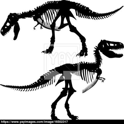 512x510 T Rex Skeleton Vector
