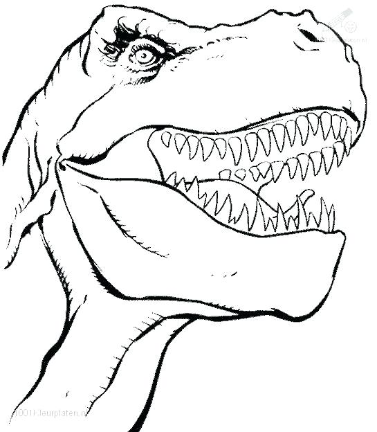 545x624 Trex Coloring Page Dinosaurs Coloring Pages T Rex Skeleton