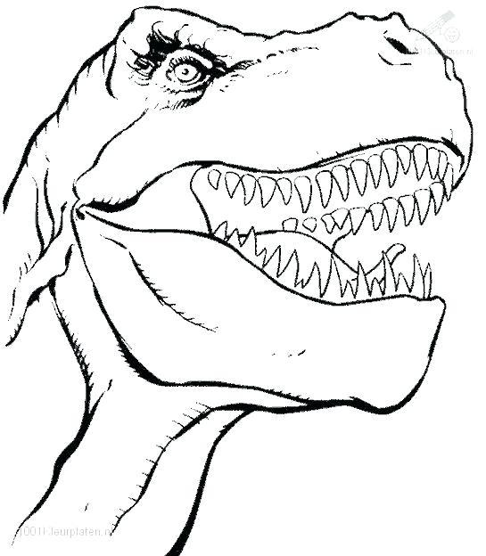 T Rex Skeleton Drawing At GetDrawings